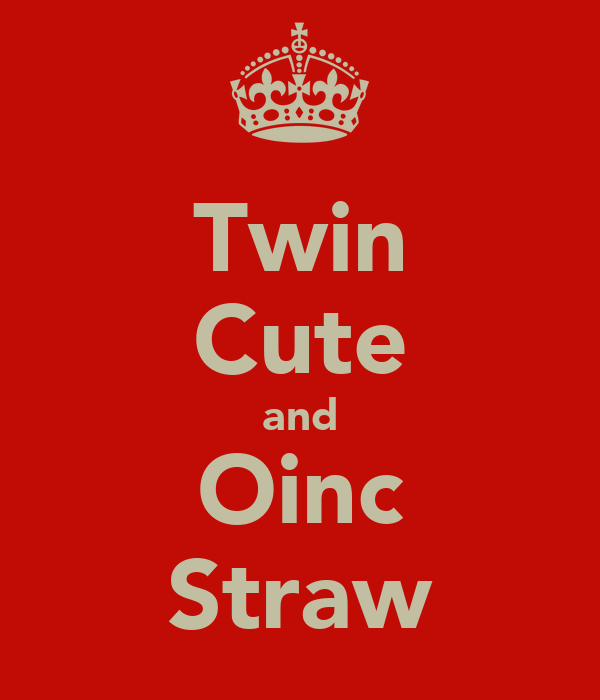 Twin Cute and Oinc Straw