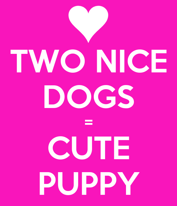 TWO NICE DOGS = CUTE PUPPY