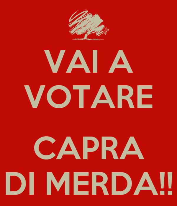 VAI A VOTARE  CAPRA DI MERDA!!