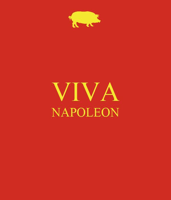 VIVA NAPOLEON
