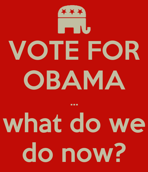 VOTE FOR OBAMA ... what do we do now?