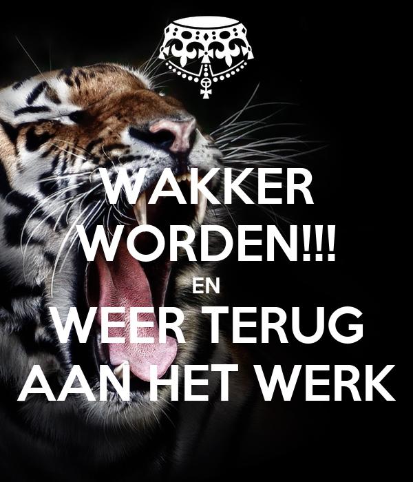 WAKKER WORDEN!!! EN WEER TERUG AAN HET WERK