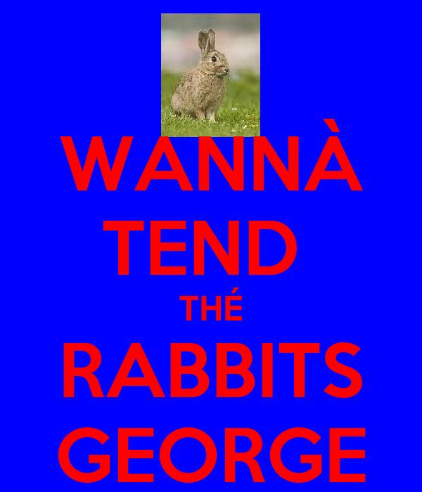 WANNÀ TEND  THÉ RABBITS GEORGE