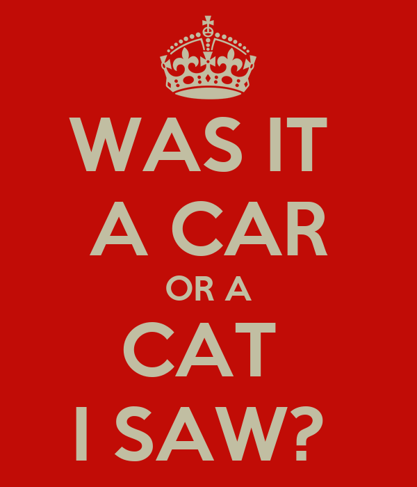 WAS IT  A CAR OR A CAT  I SAW?
