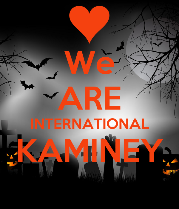 We ARE INTERNATIONAL KAMINEY