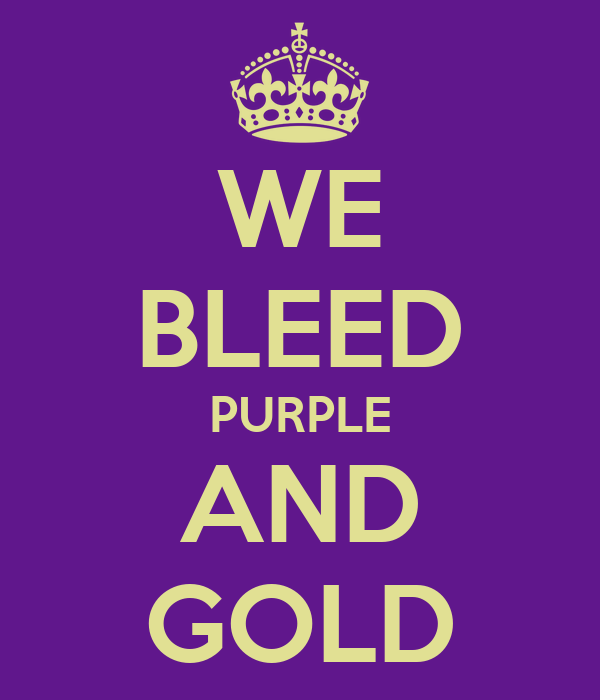 WE BLEED PURPLE AND GOLD