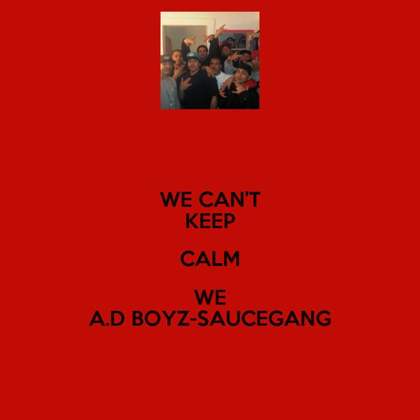 WE CAN'T KEEP CALM WE A.D BOYZ-SAUCEGANG