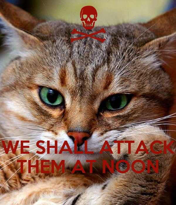 WE SHALL ATTACK THEM AT NOON