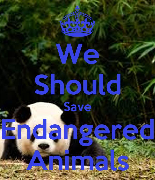 We Should Save  Endangered  Animals
