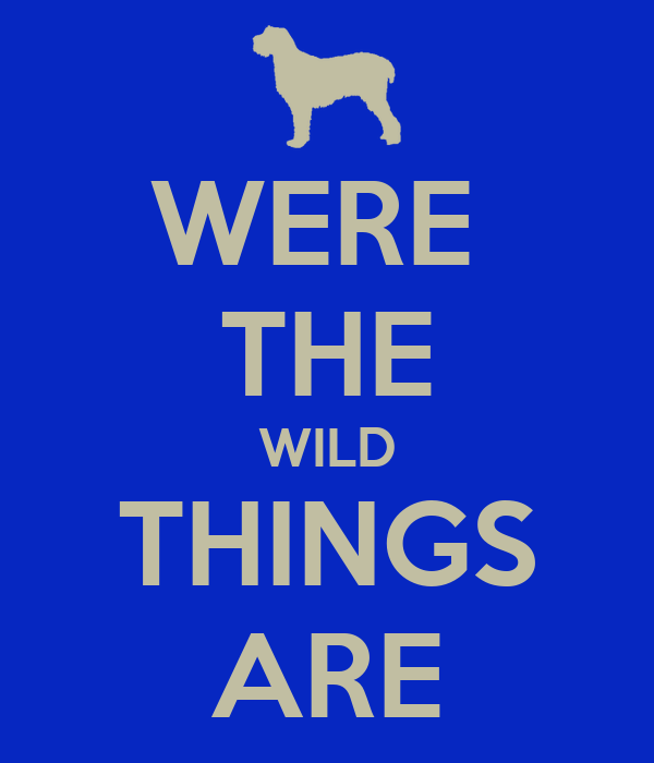 WERE  THE WILD THINGS ARE