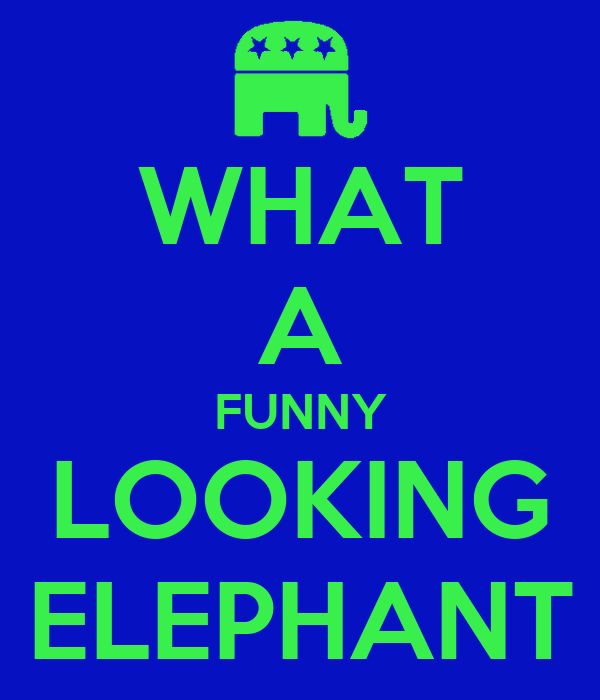 WHAT A FUNNY LOOKING ELEPHANT