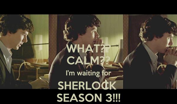 WHAT?? CALM?? I'm waiting for SHERLOCK  SEASON 3!!!