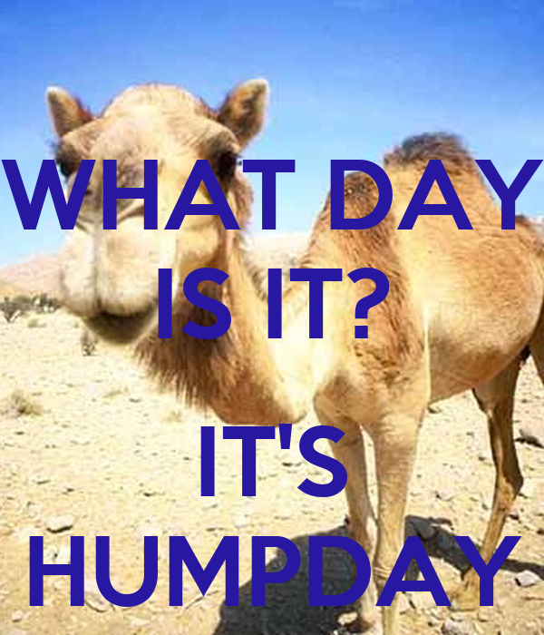 WHAT DAY IS IT?  IT'S HUMPDAY