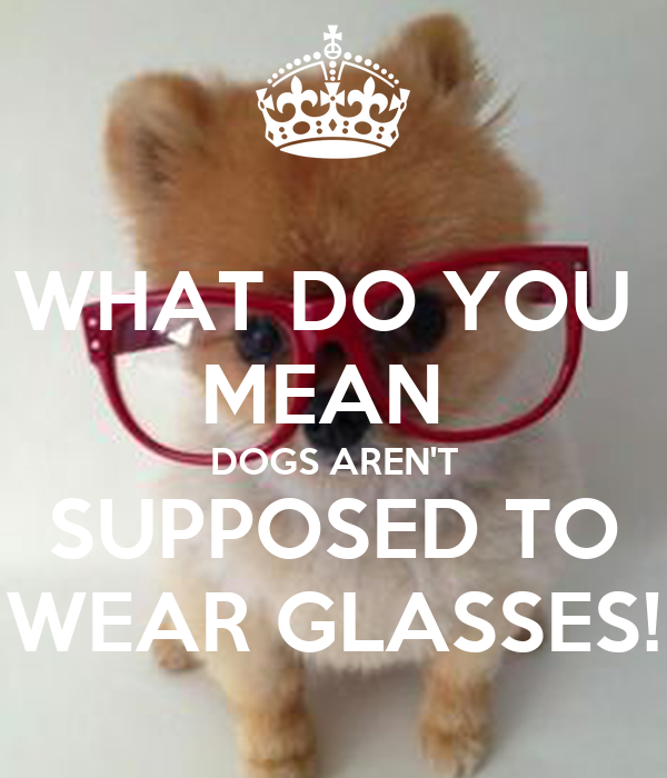 WHAT DO YOU  MEAN  DOGS AREN'T SUPPOSED TO WEAR GLASSES!