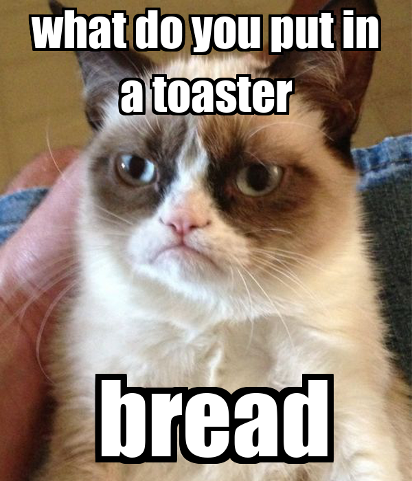 what do you put in a toaster  bread