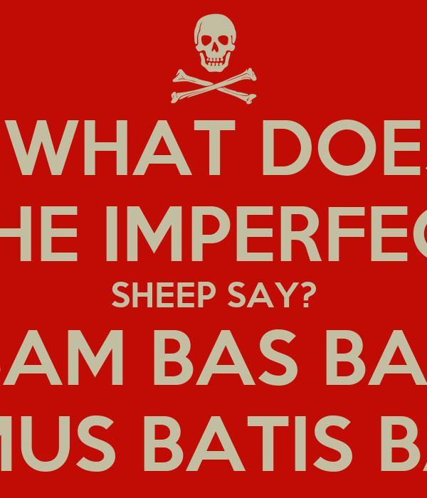 WHAT DOES  THE IMPERFECT SHEEP SAY? BAM BAS BAT BAMUS BATIS BANT