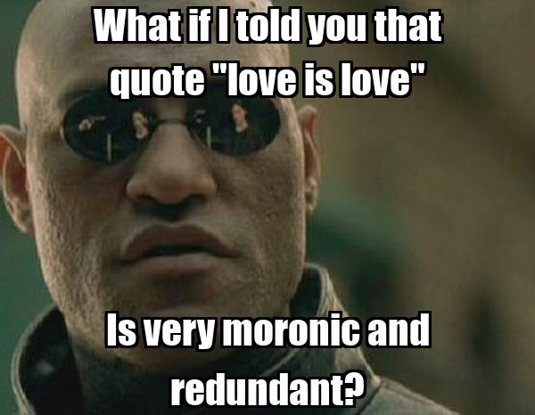 """What if I told you that quote """"love is love"""" Is very moronic and redundant?"""