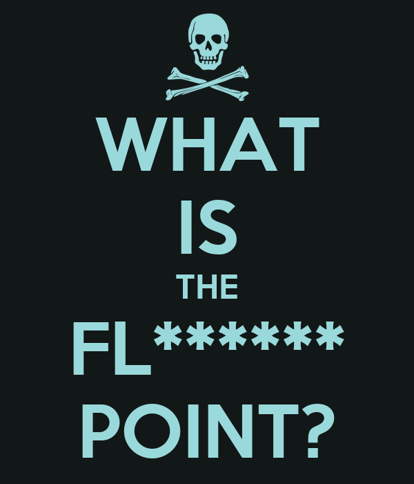 WHAT IS THE FL****** POINT?