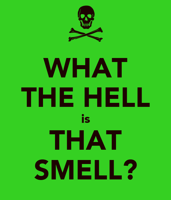 WHAT THE HELL is THAT SMELL?