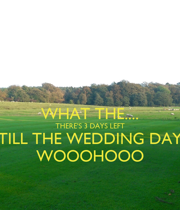 WHAT THE.... THERE'S 3 DAYS LEFT TILL THE WEDDING DAY WOOOHOOO