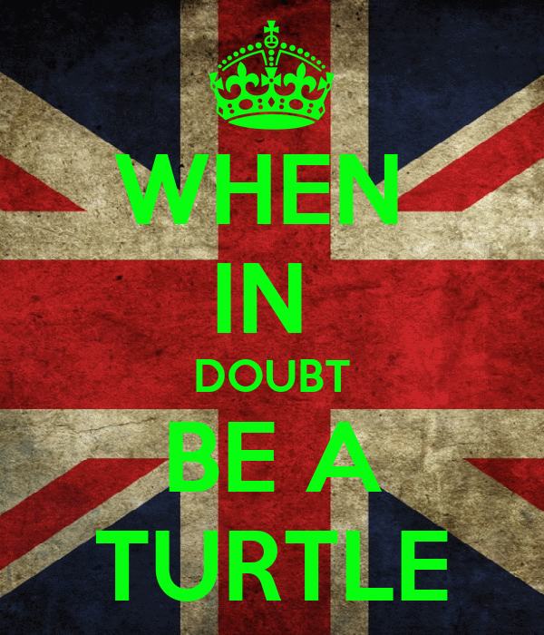 WHEN  IN  DOUBT BE A TURTLE