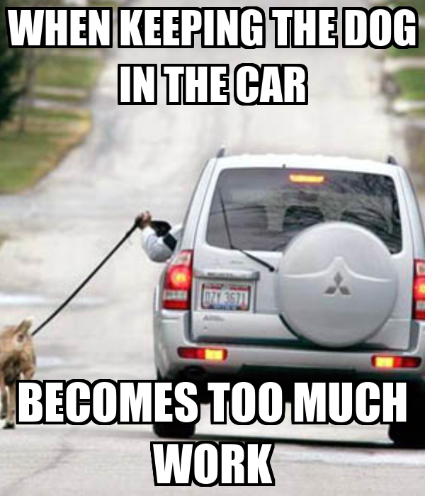WHEN KEEPING THE DOG IN THE CAR BECOMES TOO MUCH WORK