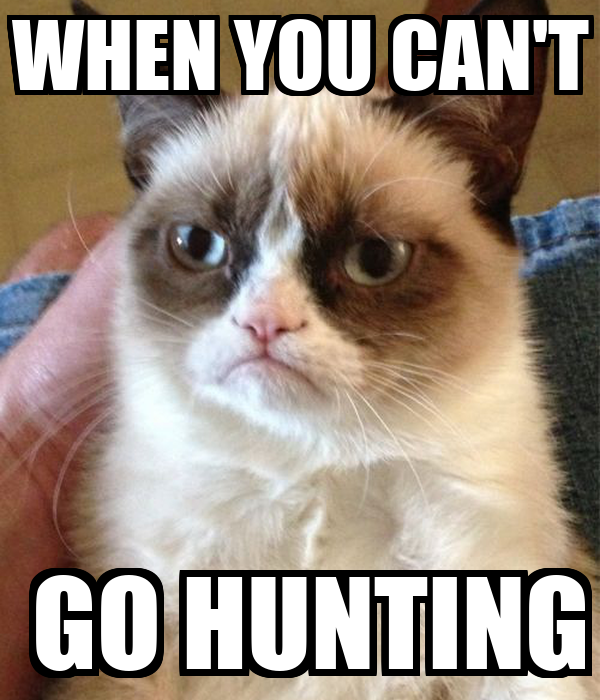 WHEN YOU CAN'T  GO HUNTING