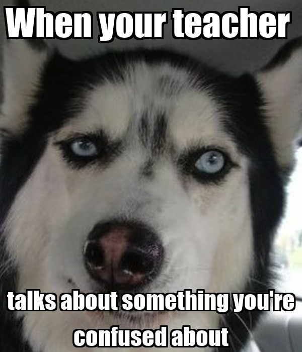 When your teacher  talks about something you're confused about