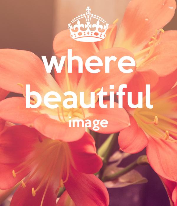 where beautiful image