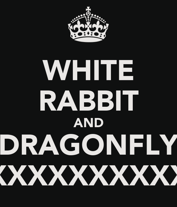 WHITE RABBIT AND DRAGONFLY XXXXXXXXXXXXXX