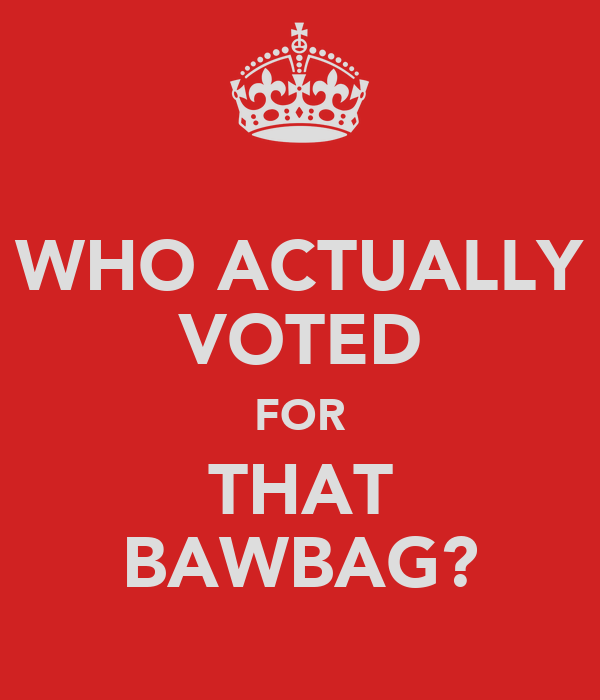WHO ACTUALLY VOTED FOR THAT BAWBAG?