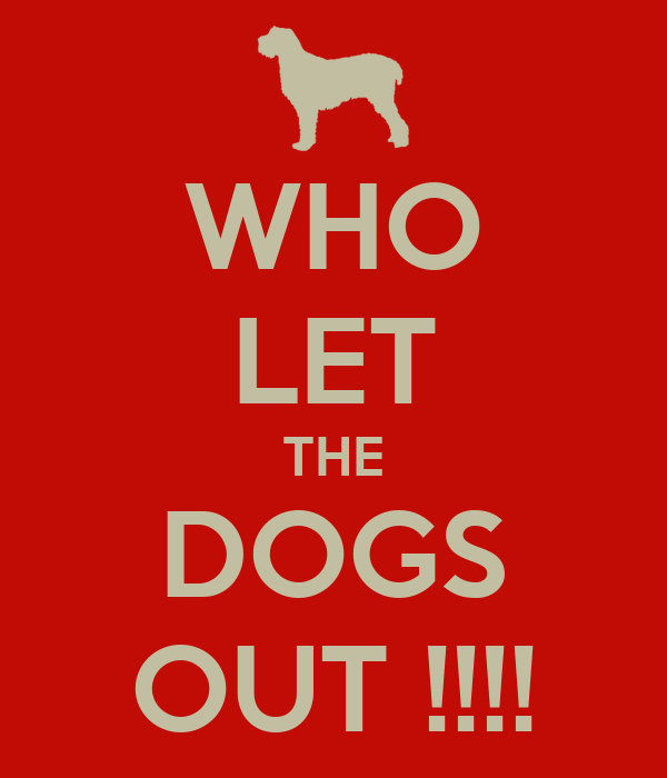 WHO LET THE DOGS OUT !!!!