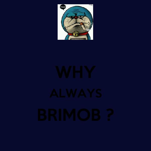 WHY ALWAYS BRIMOB ?
