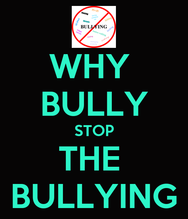 WHY  BULLY STOP THE  BULLYING