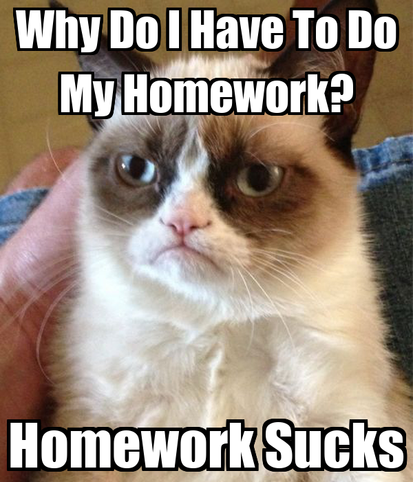 Why do i have to do my homework