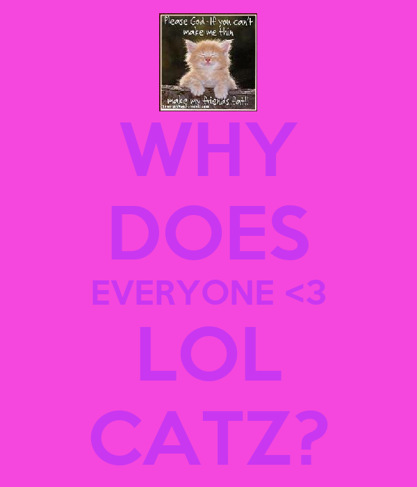 WHY DOES EVERYONE <3 LOL CATZ?