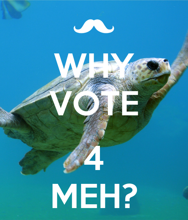 WHY VOTE  4 MEH?