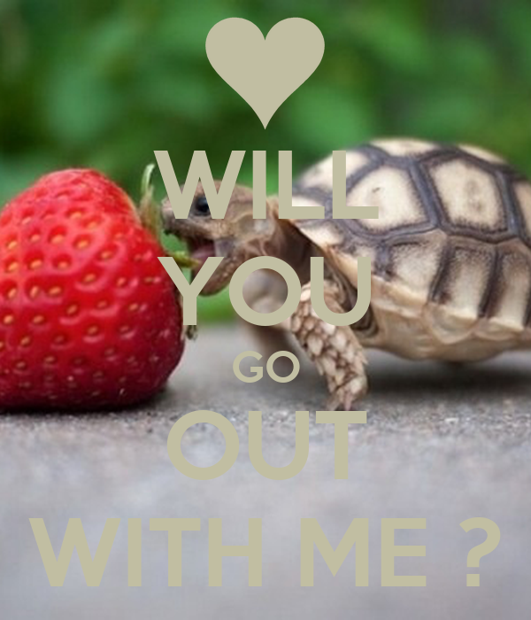 WILL YOU GO OUT WITH ME ?