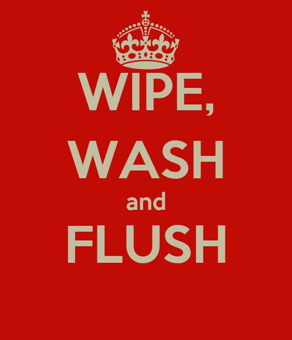 WIPE, WASH and FLUSH