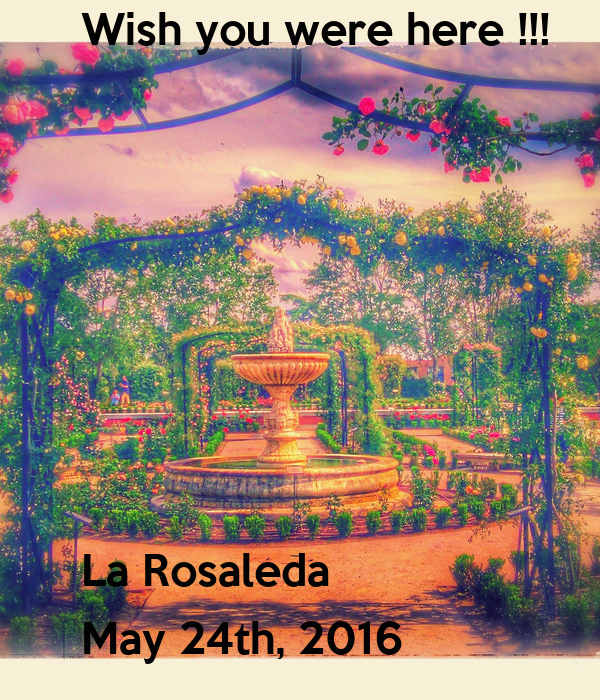 Wish you were here !!!        La Rosaleda May 24th, 2016