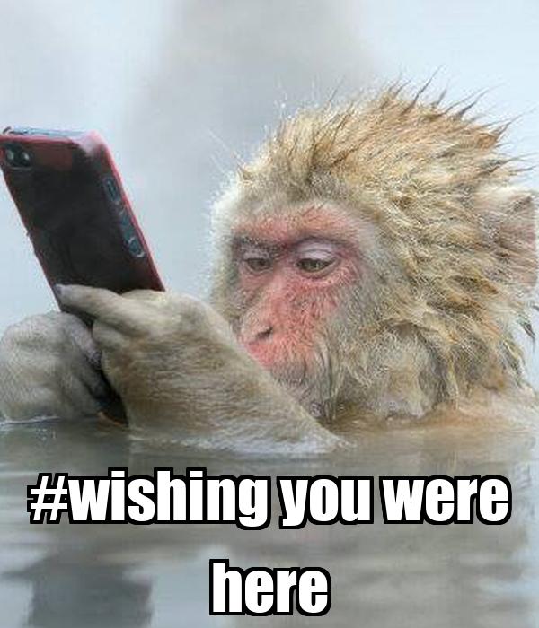 #wishing you were here