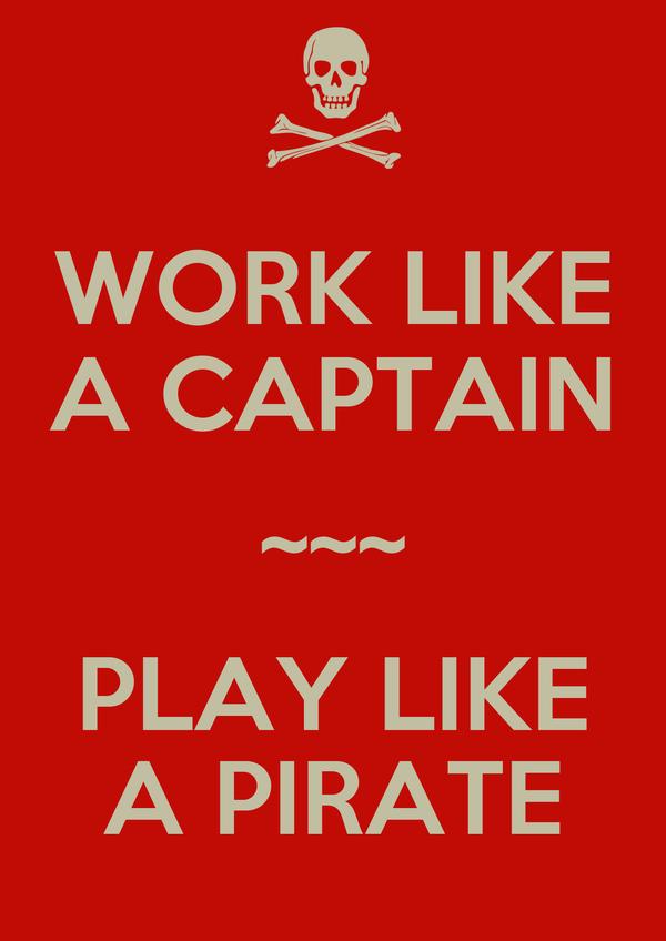 WORK LIKE A CAPTAIN ~~~ PLAY LIKE A PIRATE