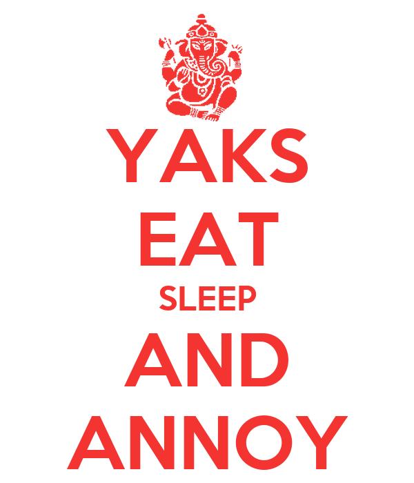 YAKS EAT SLEEP AND ANNOY