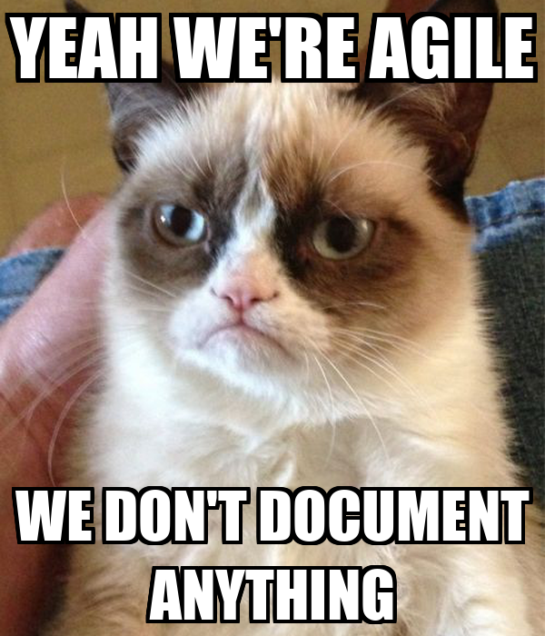YEAH WE'RE AGILE WE DON'T DOCUMENT ANYTHING