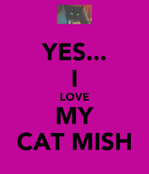 YES... I LOVE MY CAT MISH