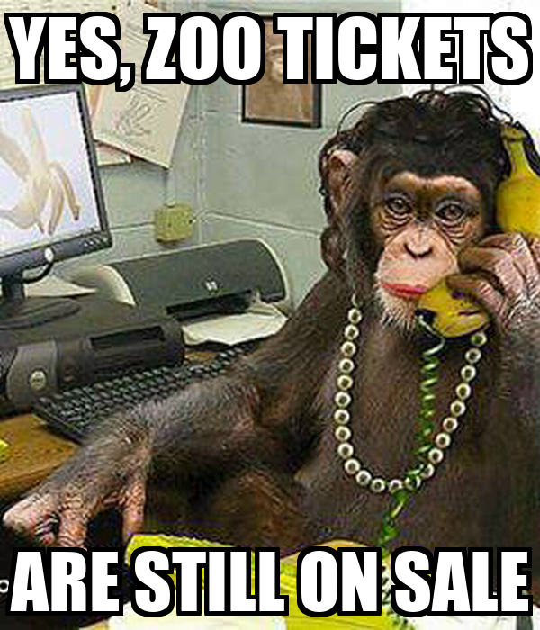 YES, ZOO TICKETS ARE STILL ON SALE