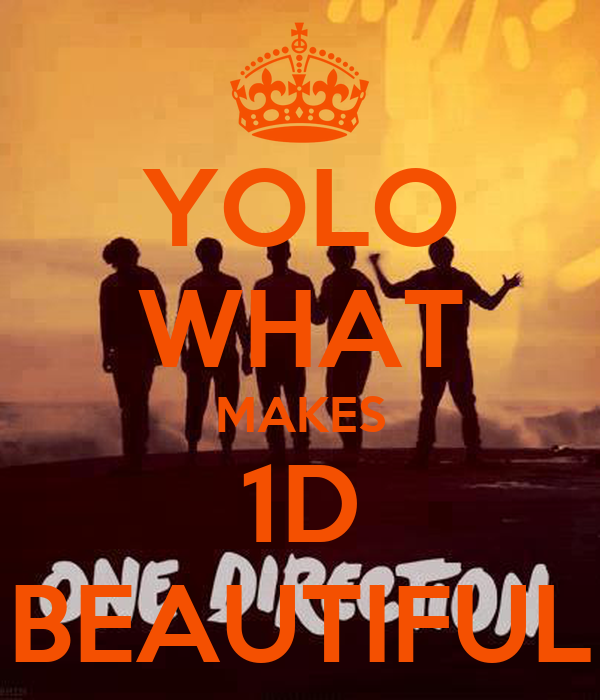 YOLO WHAT MAKES 1D BEAUTIFUL