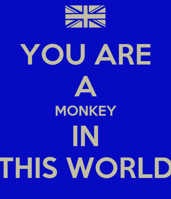 YOU ARE A MONKEY IN THIS WORLD