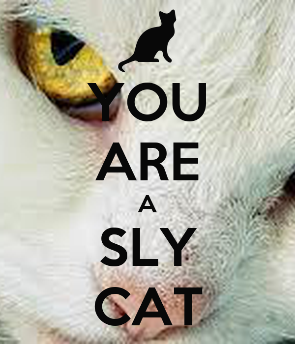 YOU ARE A SLY CAT