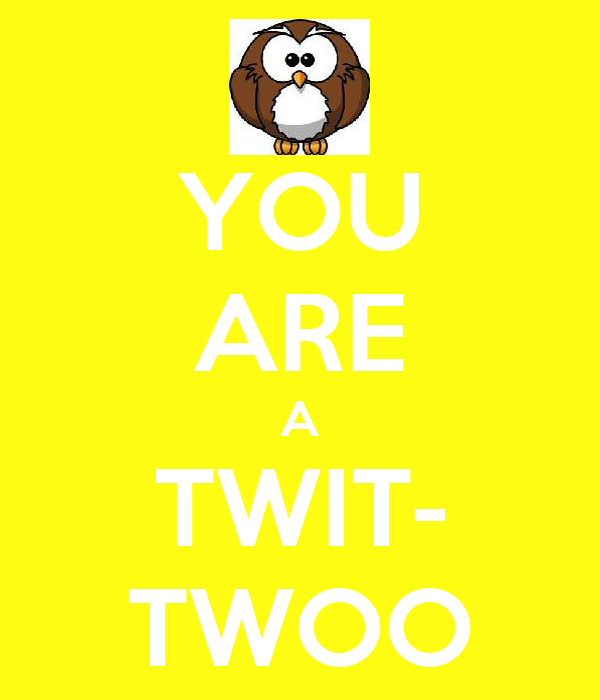 YOU ARE A TWIT- TWOO